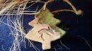 Keramik  Baum mit süßem Reh